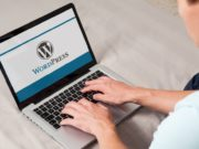 wordpress bugs